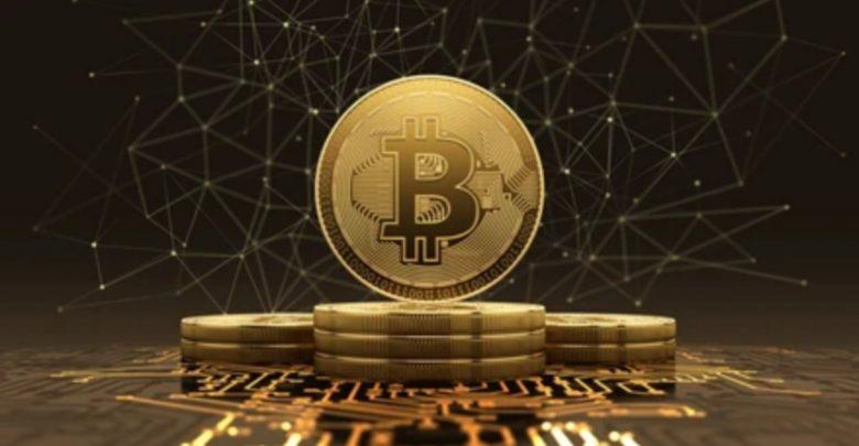 bitcoin 100 bitcoin btc rinka